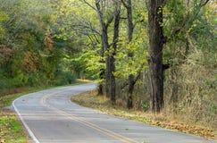 通过森林驾驶 免版税图库摄影