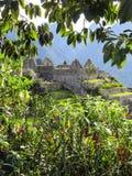 通过植物和树被观看的马丘比丘风景 免版税库存照片