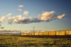 通过的两列火车在日落 免版税库存照片