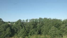 通过的高速列车移动领域和低树 股票视频