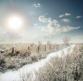 通过篱芭的积雪的路在领域 免版税库存照片