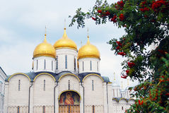 通过花楸浆果被看见的Dormition教会 免版税库存照片