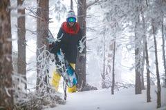通过进来在冬天森林里的女孩挡雪板 免版税库存照片