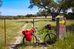 通过通往圣地亚哥的de拉普拉塔道路乘自行车西班牙 库存图片