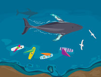 通过通过的风船和的鲸鱼鸟瞰图  库存图片