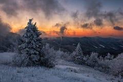 通过雾在日出,冷漠风景 免版税库存图片