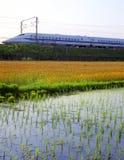通过稻米的高速火车 免版税库存图片