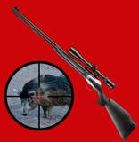 通配公猪的狩猎 免版税库存图片