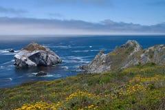 通配加利福尼亚的海岸线 库存图片