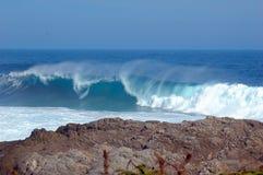 通配南部非洲的海岸 库存照片