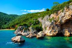 通配和美丽的海岸 免版税库存照片