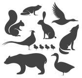 通配抽象的动物 剪影 图库摄影