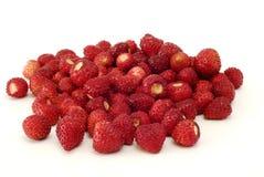 通配新鲜的草莓 免版税库存图片