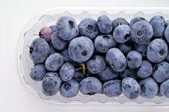 通配浆果的蓝莓 免版税库存图片