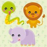 通配的动物 免版税图库摄影