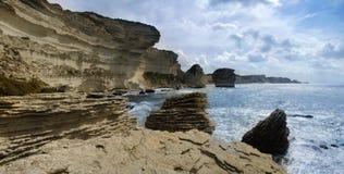 通配的海岸 免版税库存照片