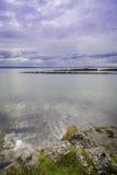 通配的海岸 库存图片