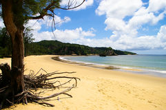 通配的海滩 库存图片