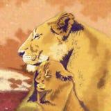 通配的猫 狮子家庭 免版税库存照片