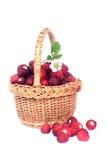 通配篮子的草莓 库存图片