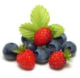 通配蓝莓的草莓 免版税图库摄影