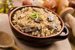 通配蘑菇意大利煨饭 免版税库存图片