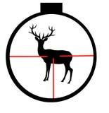 通配鹿的瞄准具 图库摄影