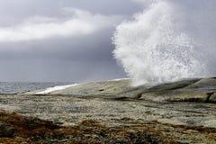 通风孔Bicheno,塔斯马尼亚岛,澳大利亚 免版税库存图片