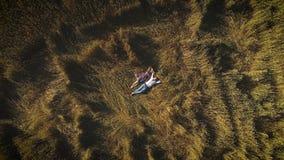 通风 一个女孩和一个人便衣的在草料棚在并且享受一个温暖的夏日 友谊,爱的概念 股票视频