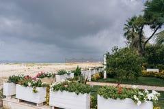 通风 有生命的假人 在亚得里亚海的海滩 免版税库存照片
