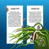 速写与空间的卡片文本和鱼zanclus cornutus的 海报、邀请或者其他卡片的样品 向量 免版税库存图片