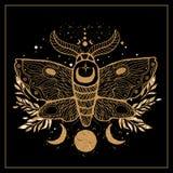 速写图表与神秘和隐密手拉的标志的例证美丽的金飞蛾 也corel凹道例证向量 万圣夜和esot 库存照片