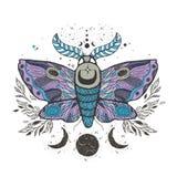 速写图表与神秘和隐密手拉的标志的例证美丽的飞蛾 也corel凹道例证向量 万圣夜和神秘 免版税库存图片