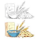 速写粥被隔绝的玉米片和muesli在白色背景 免版税库存照片