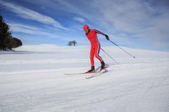 速度滑雪 免版税库存照片
