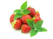 造币厂的草莓 免版税图库摄影