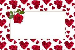 仿造红色心脏玫瑰花瓣贺卡宿营 免版税库存图片