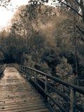 道内的谷桥梁  库存图片