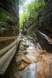水道峡谷Franconia山谷NH 免版税图库摄影