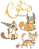 黄道带签到猫:地球的元素 库存图片