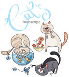 黄道带签到猫:水的元素 免版税库存图片