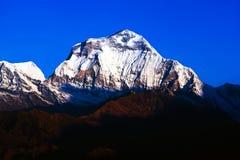 道拉吉里峰峰顶,尼泊尔 图库摄影