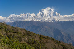 道拉吉里峰从Ghorepani村庄的山峰图, ABC, Pokha 库存照片