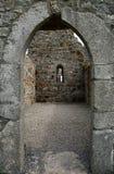 道林, Clonmacnoise,爱尔兰寺庙  图库摄影
