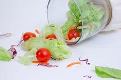 1道蔬菜沙拉 免版税库存图片
