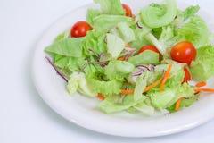 1道蔬菜沙拉 免版税图库摄影
