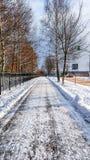 道路从雪被清洗,在雪在沥青被清除在城市的冬天 路人的一条被清除的路 库存照片
