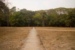 道路到从吴哥窟,柬埔寨的森林里 库存照片