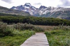 道路向拉古纳埃斯梅拉达在乌斯怀亚附近的火地群岛公园, Paragonia,阿根廷 库存照片