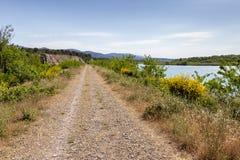 道路和黄色笤帚在监禁河一边在普罗旺斯 库存照片